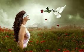woman dove rose